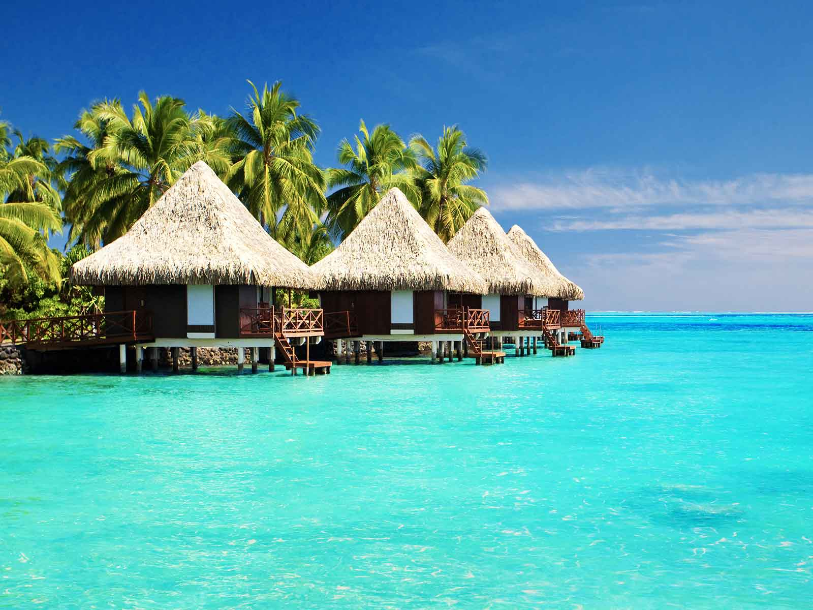 Motius per a estudiar el màster en direcció hotelera internacional